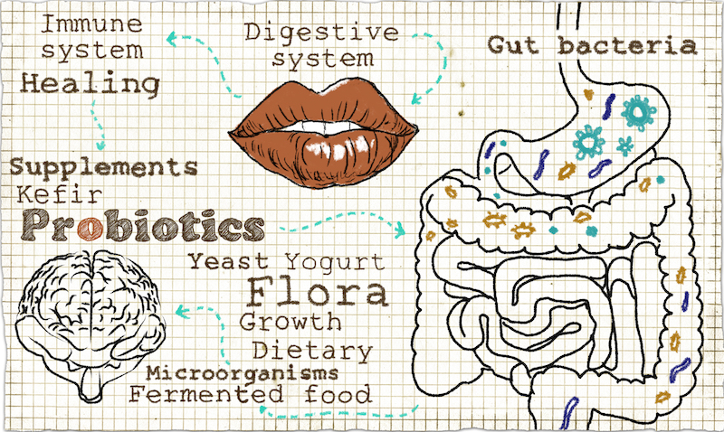 Natural solutions for your digestive troubles